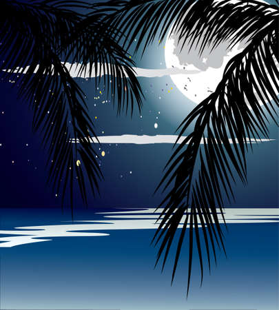 Ocean in the night, full moon and stars.