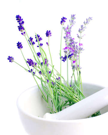 Lavender herb leaves in an ceranic mortar with pestle over white background.