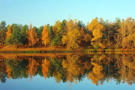 Picturesque autumn landscape on the river