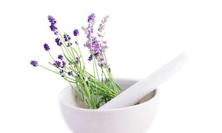 Lavendel Kraut bewirkt eine Ceranic Mörtel mit Pistill gegenüber dem weißen Hintergrund.  Standard-Bild