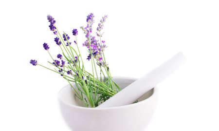 Lavender herb leaves in an ceranic mortar with pestle over white background.  photo
