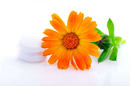 Flower marigold medical with pills over white background  photo
