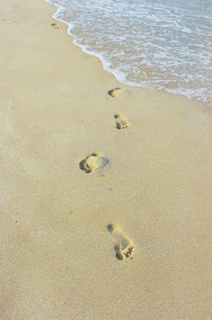 seeker: Foot prints on a sandy beach