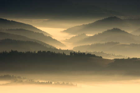 purls: evening mountain plateau landscape (Carpathian, Ukraine)
