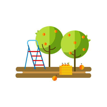 orchard: Flat illustration apple orchard and harvest fruit. Apple orchard flat icon. Illustration