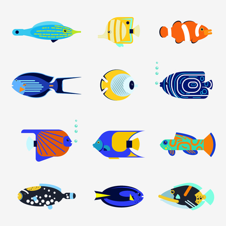 fish isolated: Tropical fish collection on white background. flat illustration sea color fish icon. Design various aquarium fish isolated