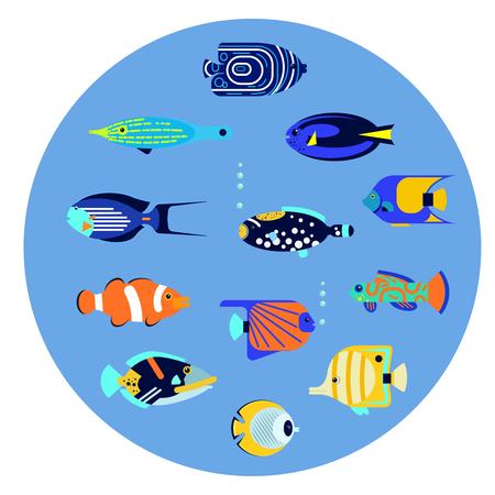 Vector flat illustration sea color tropical various aquarium fish icon.