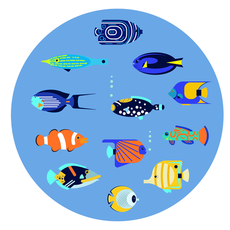 triggerfish: Vector flat illustration sea color tropical various aquarium fish icon.