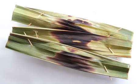 Otak-otak is a cake made of fish meat and spices.