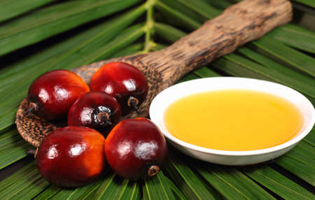 Oil Palm: Oil palm fruits and a plate of cooking oil on leaves background Stock Photo