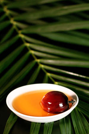 palm fruits: Oil palm fruits and a plate of cooking oil on leaves background Stock Photo