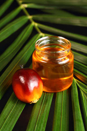 Oil palm fruits and oil bottle on a leaves background photo
