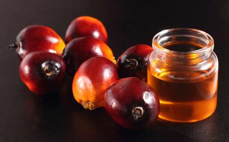 Schmierölpalmenfrüchte und Öl-Flasche auf einem Hintergrund Laub Standard-Bild - 20957573