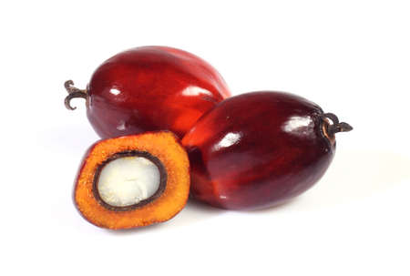 red palm oil: A group of oil palm fruits on the white background Stock Photo