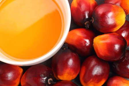 Frutos de palma aceitera y la taza de aceite de cocina en el fondo negro Foto de archivo - 21798012