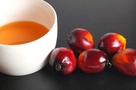 Oil palm fruits and bowl of cooking oil on black background photo