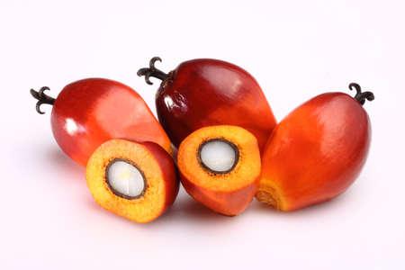 Eine Gruppe von Ölpalmen Früchte auf dem weißen Hintergrund Standard-Bild - 23310765