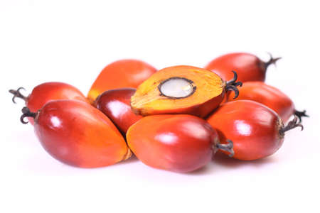 kernels: A group of oil palm fruits on the white background Stock Photo