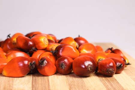 palm fruits: A group of oil palm fruits on the cutting board