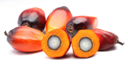 A group of oil palm fruits on the white background Stock Photo
