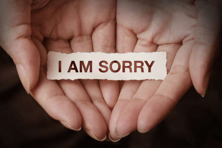 apology: I am sorry text on hand design concept