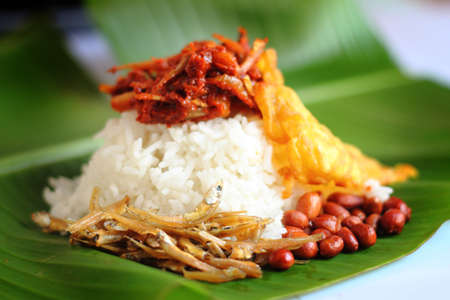 Nasi lemak is a Malay fragrant rice dish cooked in coconut milk and pandan leaf. It is commonly found in Malaysia. Standard-Bild