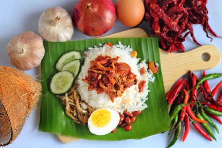 Nasi lemak is a Malay fragrant rice dish cooked in coconut milk and pandan leaf. It is commonly found in Malaysia. Banque d'images