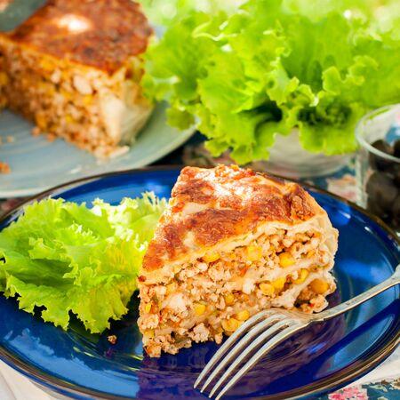 tortilla de maiz: Un pedazo de pollo mexicana, calabac�n y tortilla de ma�z de la empanada, cuadrado
