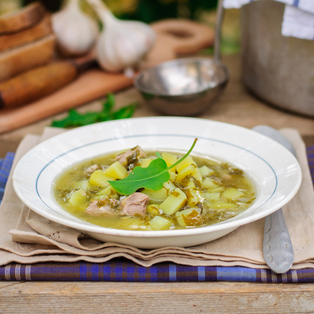 chunky: A Plate of Summer (Spring) Chunky Sorrel Soup, square Stock Photo