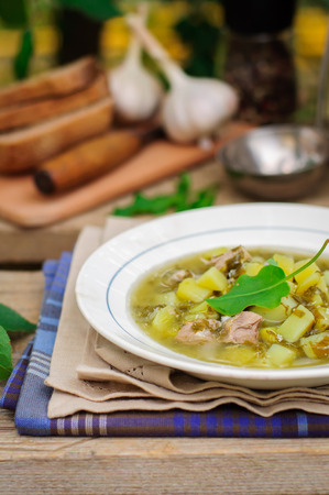 chunky: A Plate of Summer (Spring) Chunky Sorrel Soup, copy space for your text Stock Photo