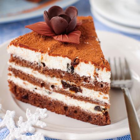 ciruela pasa: Un trozo de chocolate, Quark y Layer Cake ciruela pasa, cerca,, Kelvin superficial cuadrada