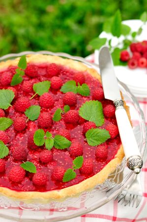 raspberry jelly: Fresh Raspberry Jelly Tart, copy space for your text, selective focus