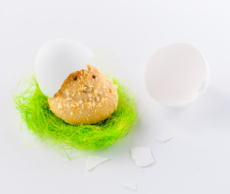 easter cookie: Easter Chick Cookie Decorated with Nest and Egg Shell