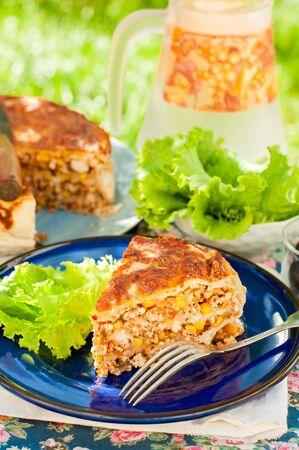 tortilla de maiz: Un pedazo de pollo mexicana, calabacín y tortilla de maíz de la empanada, copia espacio para el texto