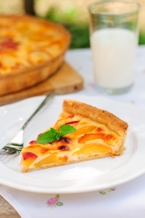 custard slice: A Slice of Peach and Sour Cream Custard Pie, copy space for your text Stock Photo