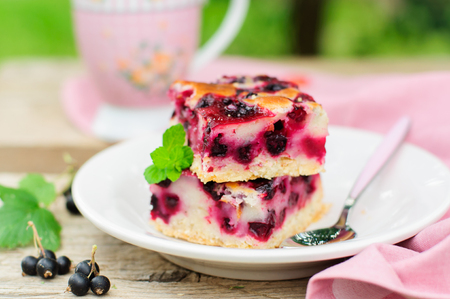 Two Baked Black Currant Pie Squares Stok Fotoğraf