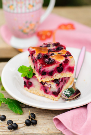 jam tarts: Two Baked Black Currant Pie Squares Stock Photo