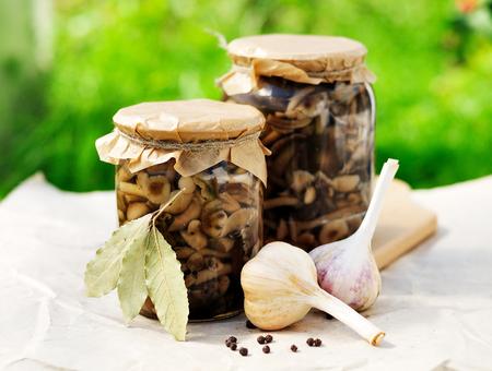 preserve: Canned Marinated Mushrooms (Honey Fungus) Stock Photo