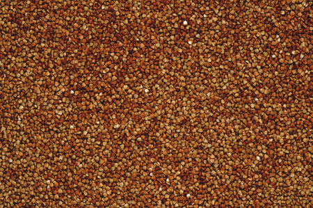 kasha: Buckwheat arranged as a background or texture