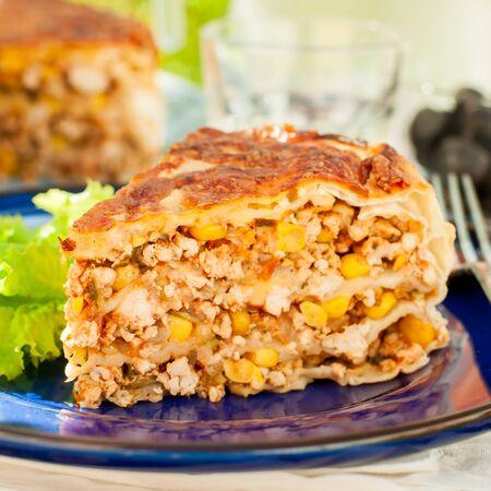 tortilla de maiz: Un pedazo de pollo mexicana, calabacín y tortilla de maíz de la empanada, de cerca, cuadrado Foto de archivo