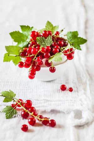 赤スグリと緑葉の白い布の背景の上セラミック ボールで 写真素材