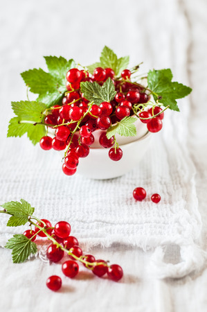Red Currants and Green Leaves in Ceramic Bowls over White Cloth Background