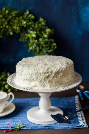retro christmas: Cristmas Coconut Cake on a White Cake Stand, copy space for your text
