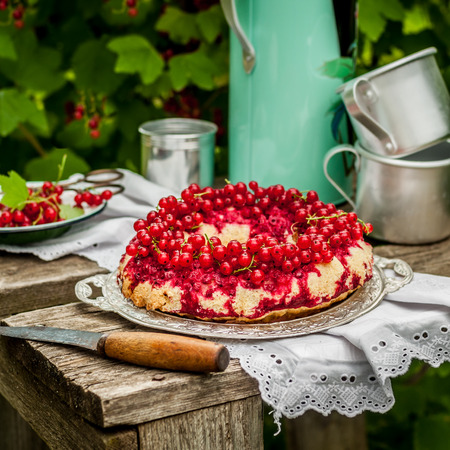Red Currant Upside Down Bundt Cake Served Outdoors, square