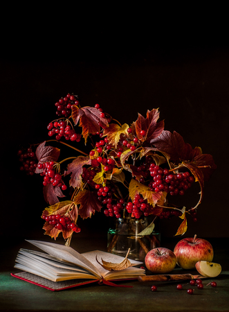 Guelder Rose Berry and Apple Still Life, square