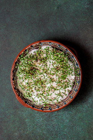 Sprouting Cress Salad Seeds on Wet Cotton Wool, copy space for your text