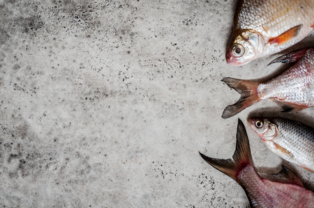 River Fish Background, copy space for text Stockfoto