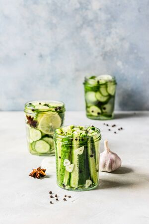 Variaty of Canned Cucumbers with Spices, Garlic, Onion and Lemon, copy space for your text
