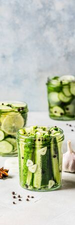 Variaty of Canned Cucumbers with Spices, Garlic, Onion and Lemon, banner, copy space for your text
