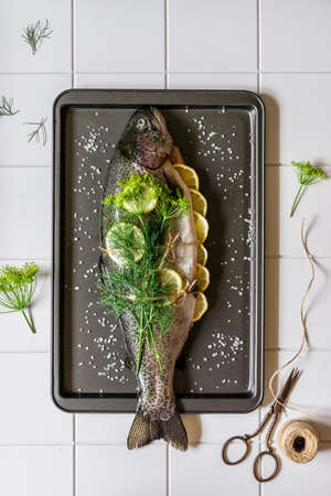Whole Raw Trout / Salmon with Lemon and Dill on the Baking Tray Prepared to Be Roasted